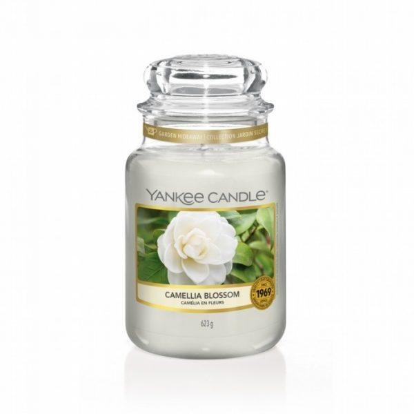 Vela Yankee Bote Gr Camellia Blossom